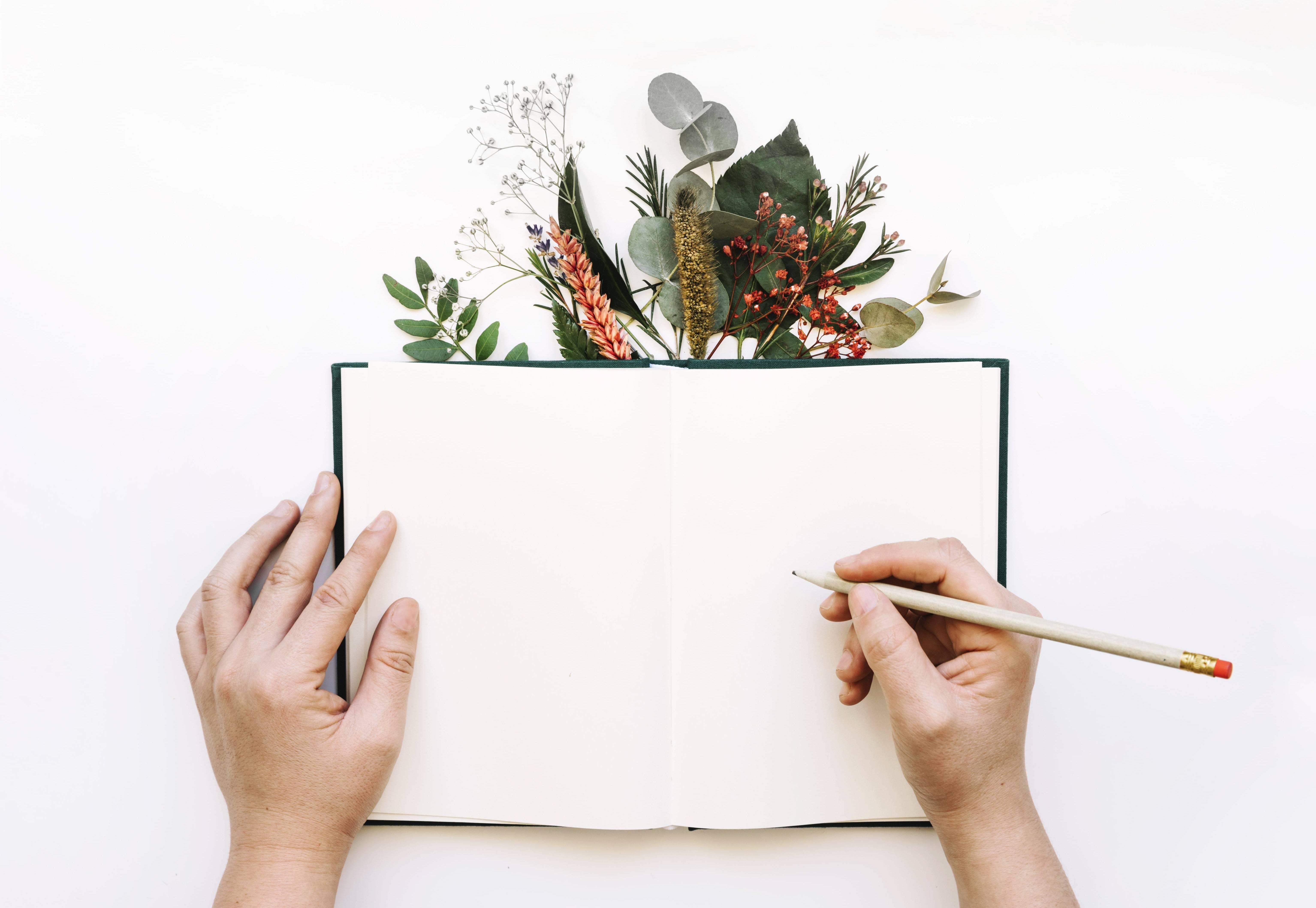 write-well