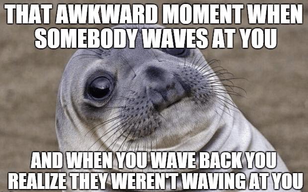 meme with awkward seal