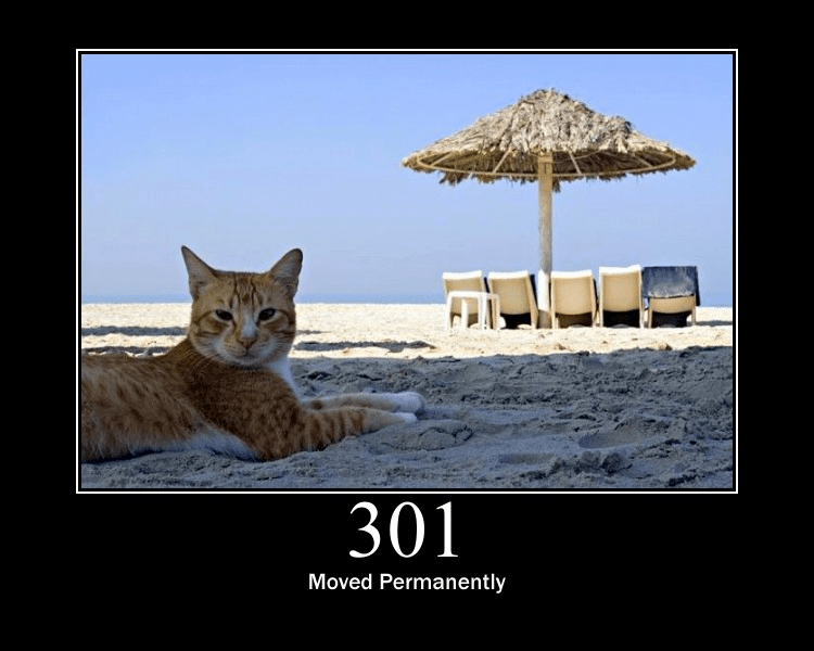 301 Moved Permanently meme