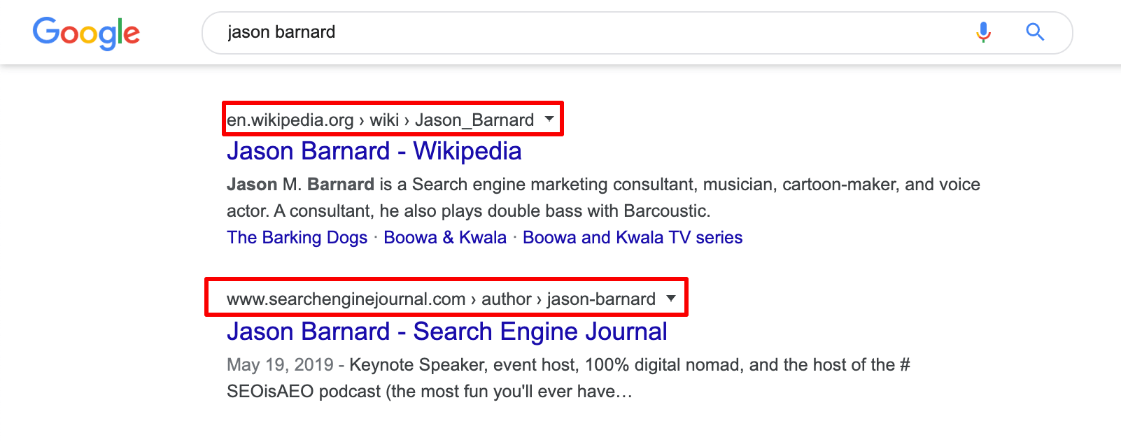 Wikipedia and SEJ pages in Jason Barnard's Brand SERP