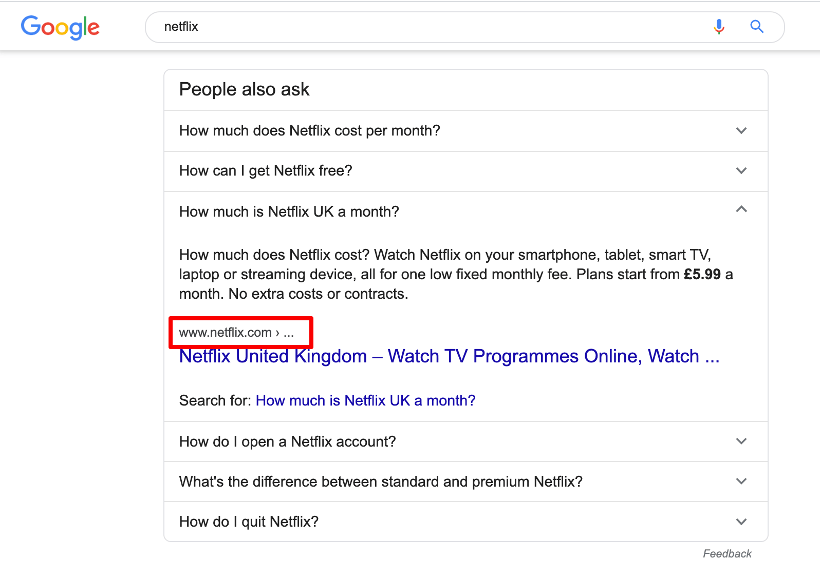 Netflix SERP People Also Ask box