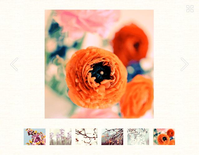 Example of image widget