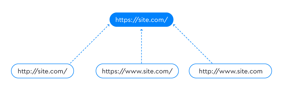 Canonical to main website version
