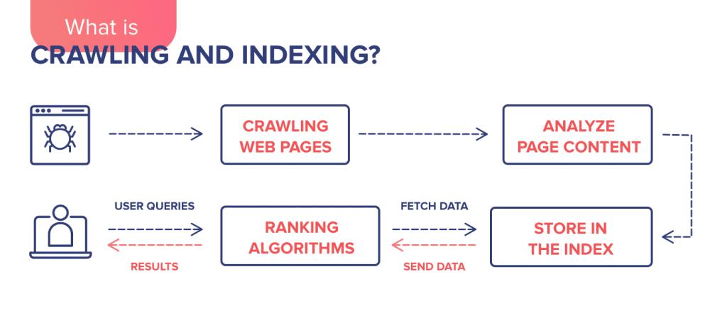 Qúe es el rastreo y la indexación